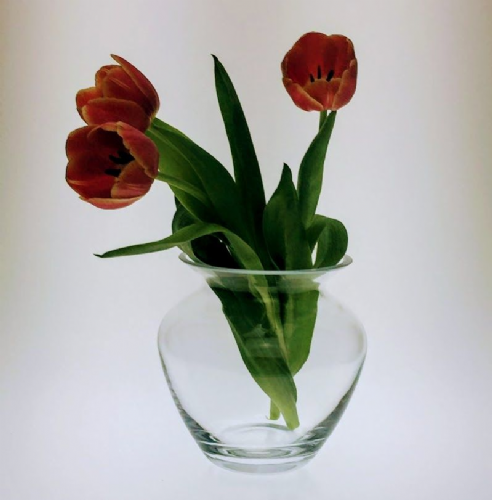 Glass Posy Vase 16 cm high